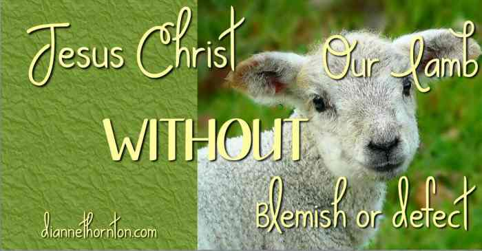 Has anyone ever traded places with you? Taken the tough road so you didn't have to? Jesus did! He is your lamb without blemish!