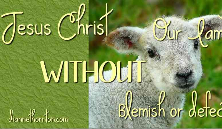 Jesus–Our Lamb WITHOUT Blemish