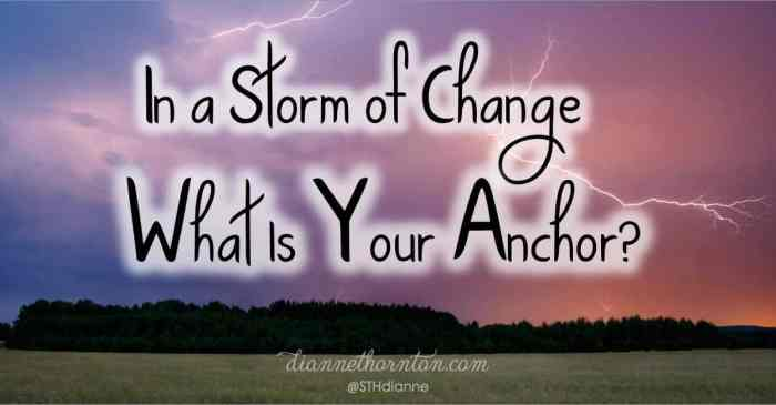 Are you living in a storm of change? Has change become the constant of your life? What do you hang onto? There is an anchor that never changes!