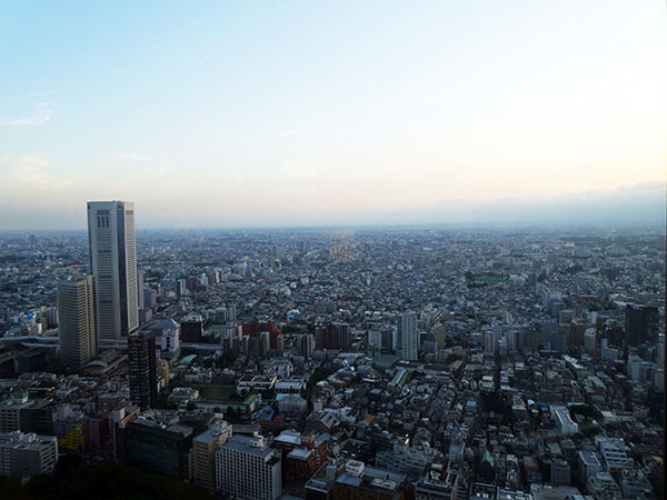 Tokyo Tower, Tokyo Metropolitan Building, Panoramic Views of Tokyo, Shinjuku, Travel with Kids, Diapersonaplane, Family Travel, Diapers On A Plane