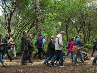 ruta inclusiva teatralitzada parc montnegre i corredor