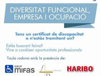 emo-jornada-diversitat-funcional-empresa-ocupacio salt