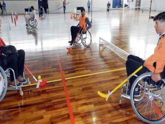 jornada inefc esport persones altres capacitats