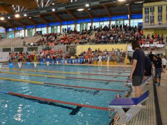club natació sabadell campionat catalunya natació acell special olympics