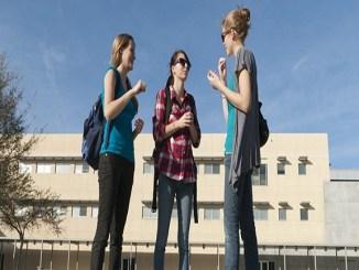 beques practiques estudiants empreses discapacitat
