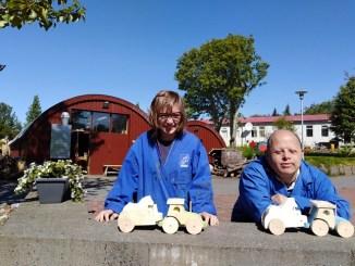 delegació-grup-alba-programa-europeu-fusteria-Islàndia