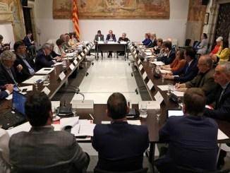 reunió pacte nacional drets persones discapacitat òrgan col·legiat
