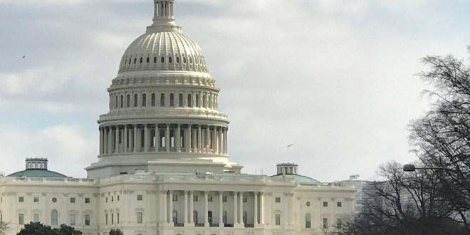 Capitolio de Estados Unidos. Washington DC.