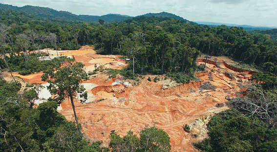 Deforestación en selva tropical de Brasil aumentó 64% en abril a pesar del coronavirus