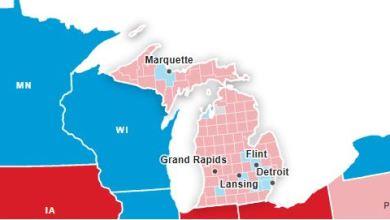 Trump denuncia intento de fraude y pide suspender conteo de votos en Michigan 6