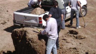 Photo of San Pedro: informe, restos fósiles y buques hundidos