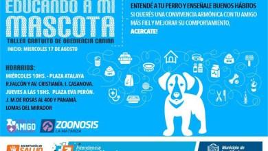 Photo of Casanova/Lomas del Mirador: Ttaller de obediencia canina Educando a mi mascota