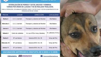 Photo of Zoonosis:Castraciones y vacunación gratuita para las mascotas