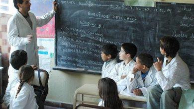 Photo of Opinión: «El programa aprender es copia de una idea que ya fracasó en el mundo»