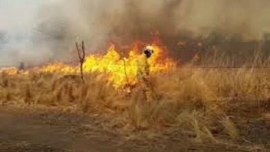 Photo of Esta complicado el combate de cuatro incendios