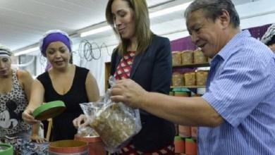 Photo of La Provincia entregará 300 mil cajas navideñas.
