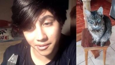 Photo of Youtuber chileno que publicó un vídeo torturando a su gato enfurece las redes