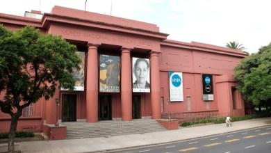 """Photo of """"Los museólogos no son incluidos dentro de los museos"""""""