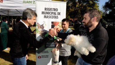 Photo of 29A: Hurlingham presentó el Registro Municipal de Mascotas