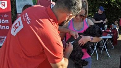 Photo of Morón vacunó gratuitamente a 800 mascotas en la Reserva