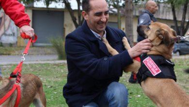 Photo of Tagliaferro presentó las dos agentes caninas anti narcóticos