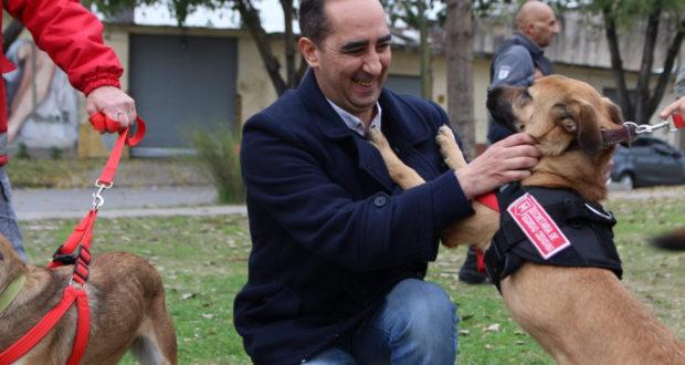Tagliaferro presentó las dos agentes caninas anti narcóticos