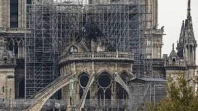 Photo of Notre Dame: cómo está hoy la catedral