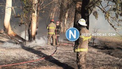 Photo of Hurlingham: Cuatro dotaciones de Bomberos combatieron un incendio de gran magnitud