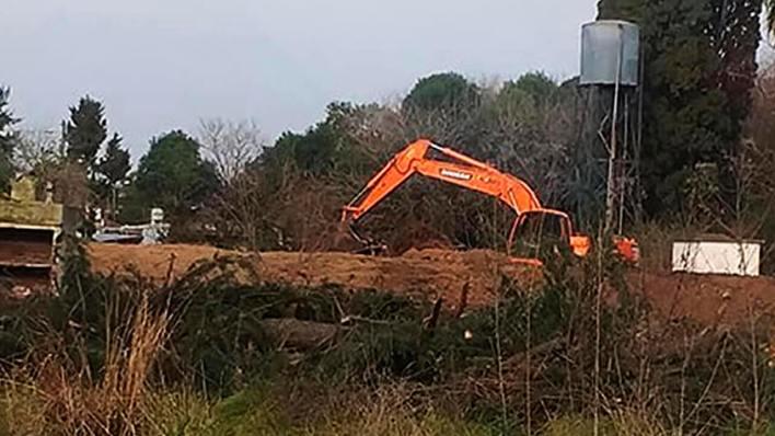 Deforestación en Castelar: Las quejas de los vecinos