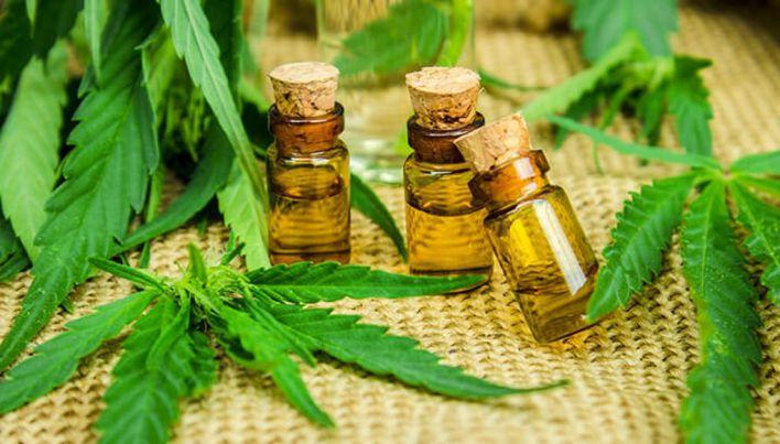 Se suman más municipios: Lomas de Zamora aprobó el uso del Cannabis medicinal