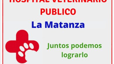 Photo of Sanidad animal: proponen la creación de un hospital veterinario en La Matanza
