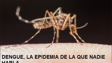 Photo of Dengue, la epidemia de la que nadie habla
