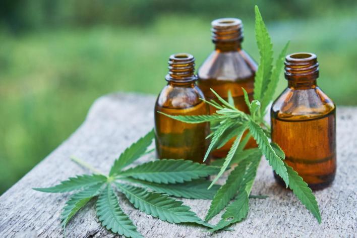 Se presentó en Morón un proyecto de ordenanza para regular el autocultivo de cannabis medicinal