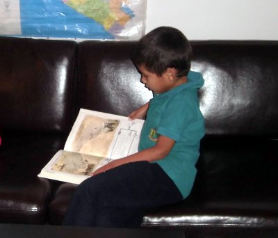 art 5 - leyendo