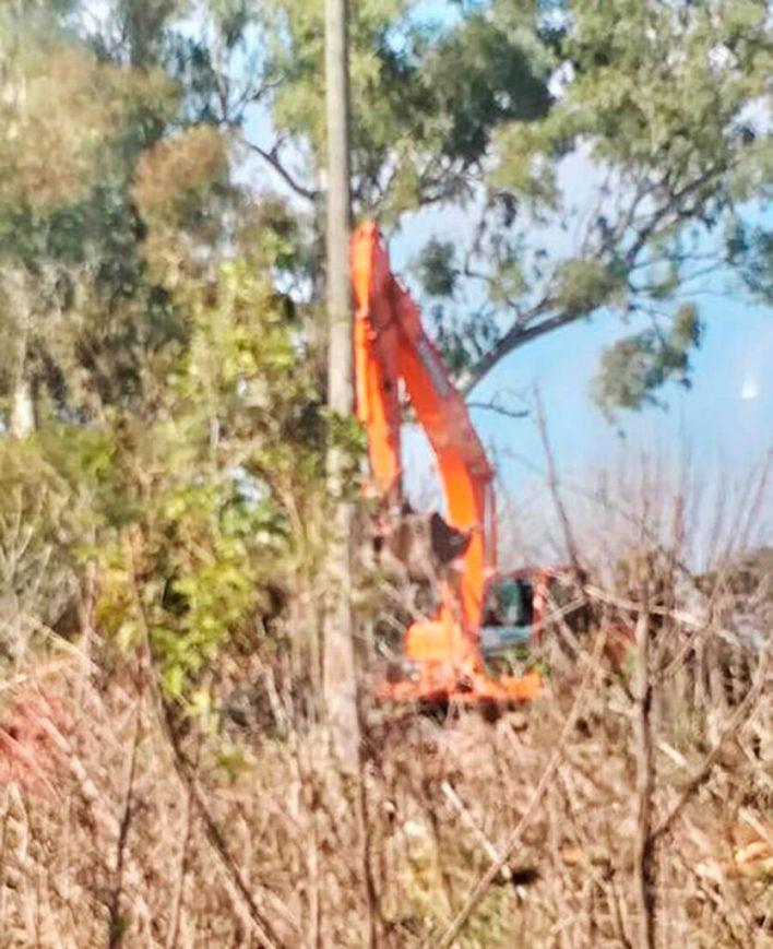 Deforestación en Castelar