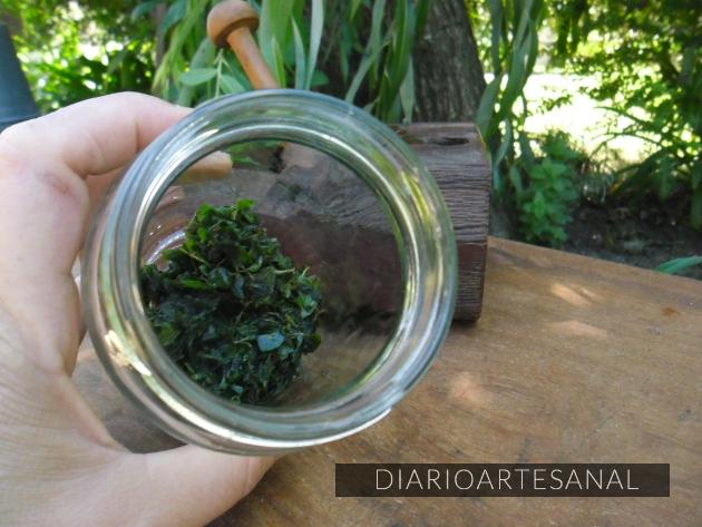 Aceite artesanal de orégano preparación