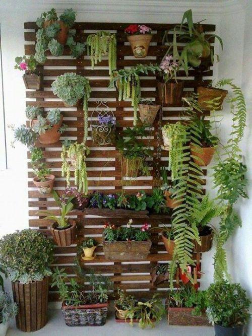 Cómo hacer un jardín vertical con macetas colgantes