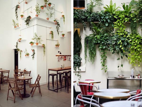 idea para colgar plantas en estantes