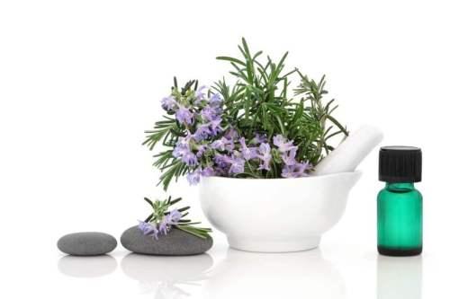 Flores de romero usos terapéuticos