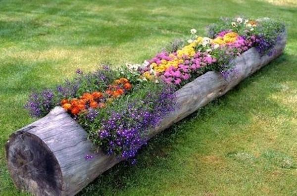 Flores en troncos del jardin