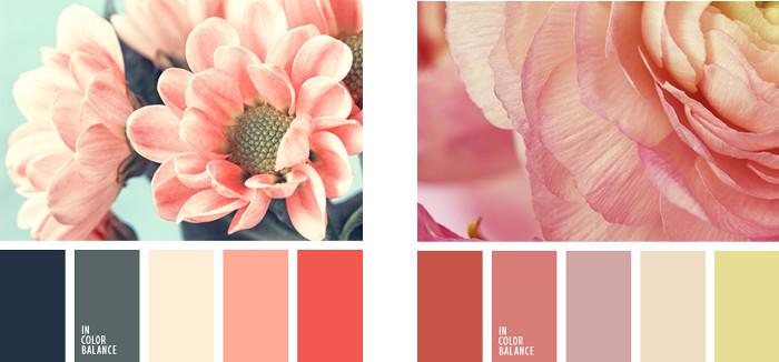 Paleta colores melocoton