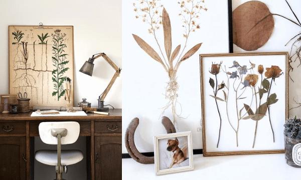 Decoración botánica: Herbarios, cuadros de plantas y otras ideas silvestres ❀