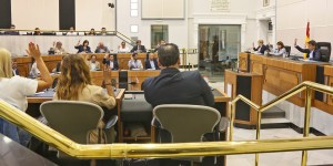 Los diputados provinciales votando por unanimidad en el pleno / Diputación de Alicante