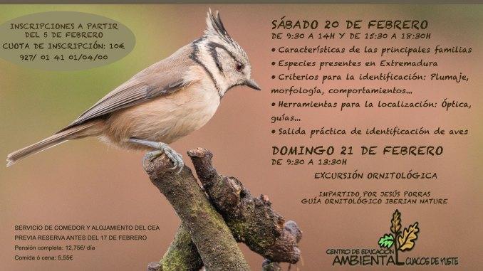 Curso de Aves en Cuacos de Yuste