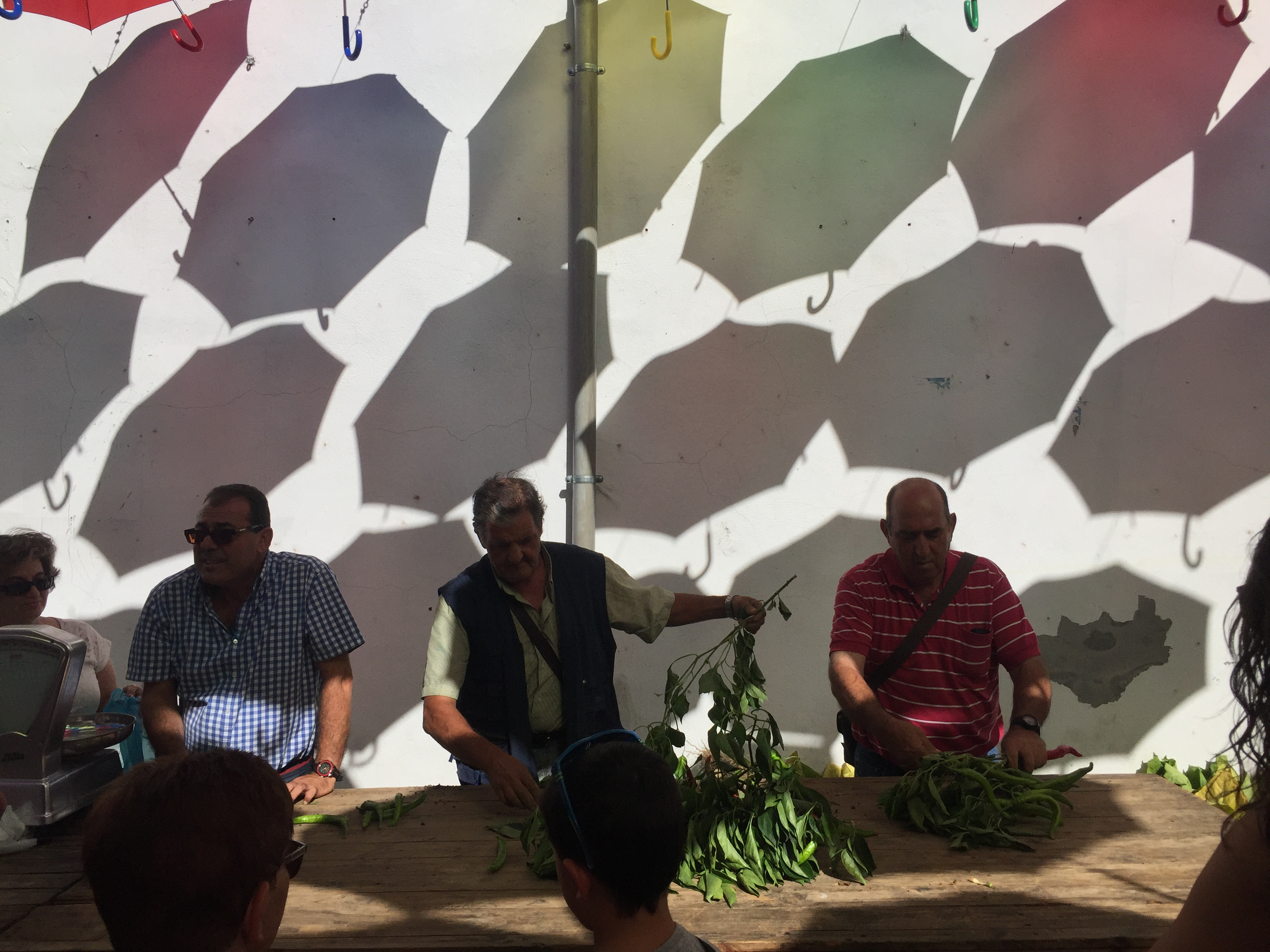 Ganadores del XLIV Concurso del Pimiento y del Tabaco de Jaraíz de la Vera (5)