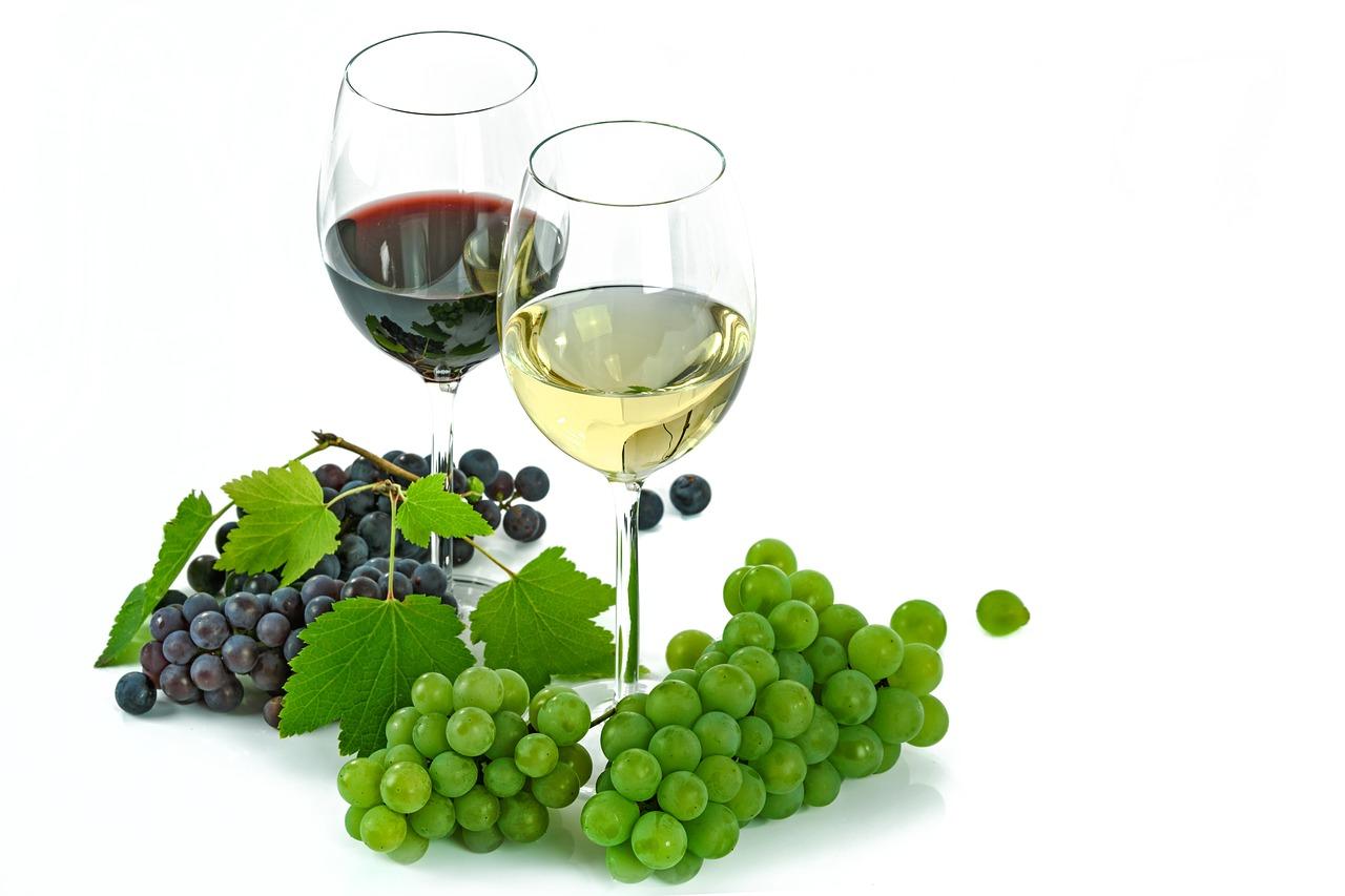 Conoce los mitos y curiosidades más importantes del vino blanco