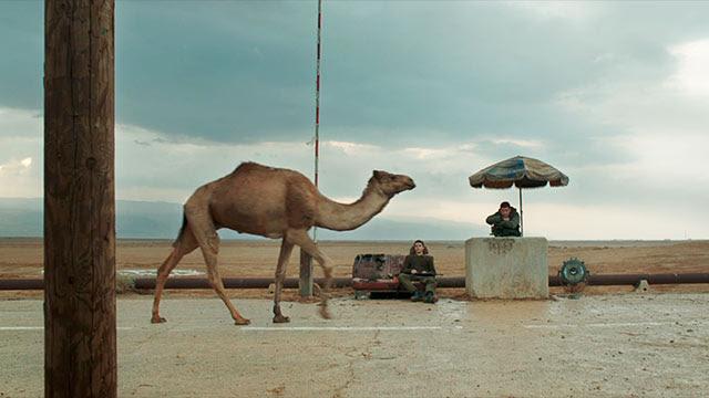 Foxtrot de Samuel Maoz esta semana Cineclub El Gallinero