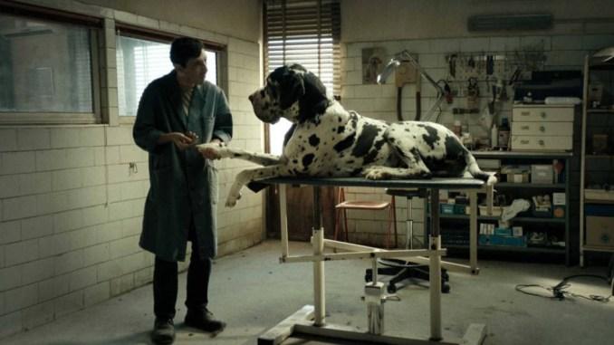 'Dogman' de Matteo Garrone esta semana en Cineclub El Gallinero