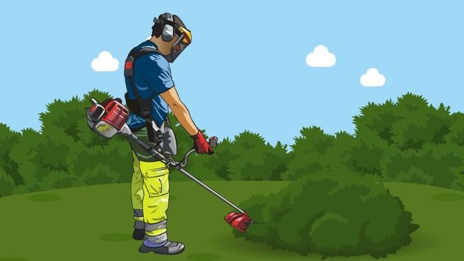gardener-4150793_1280