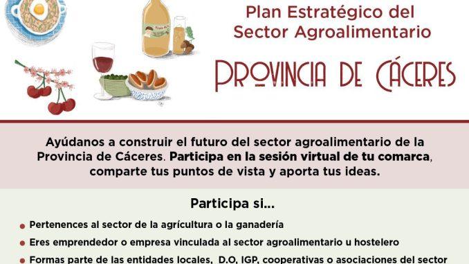 Plan Estratégico del SECTOR AGROALIMENTARIO